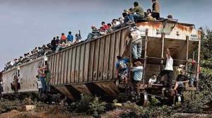 migrant_500x279