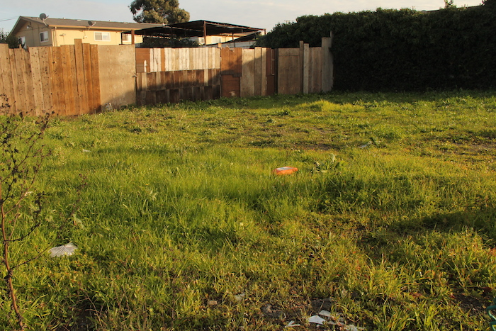Seeing Gardens in the Blight