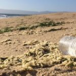 A Chance to Breathe – Protecting the Coast for Richmond Residents