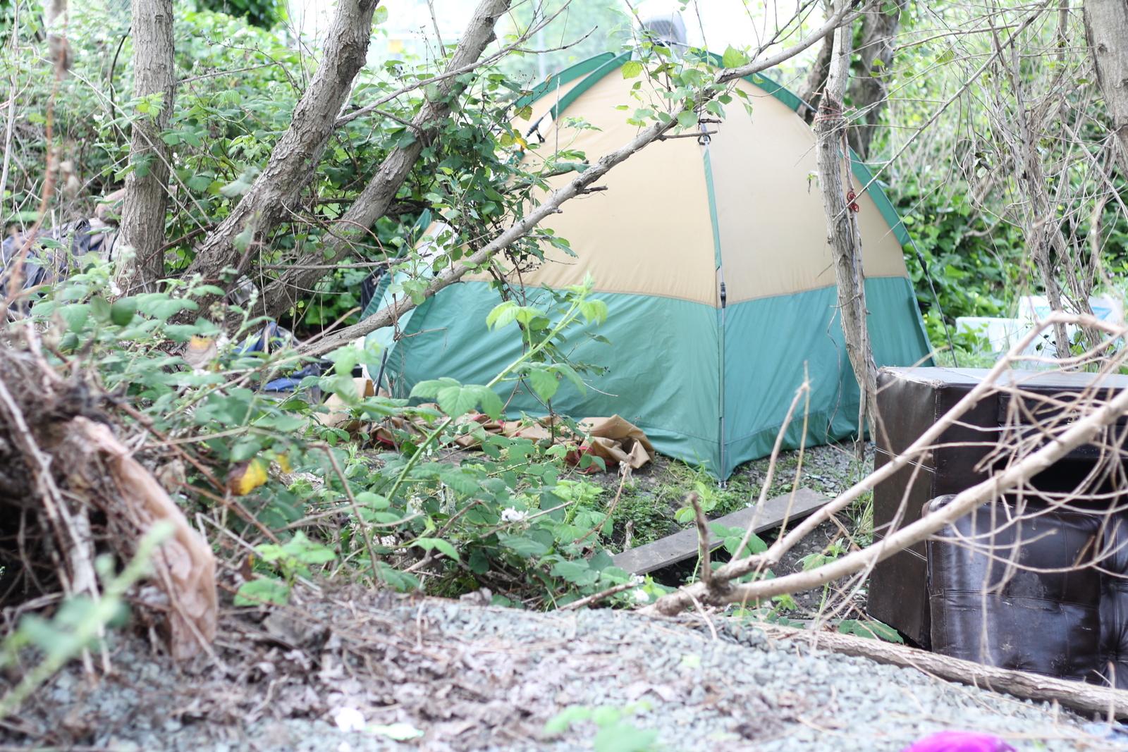 Homeless Task Force Addresses Sanctioned Encampments