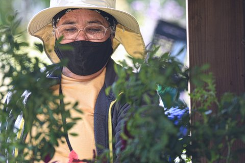 Lifelong Nature Lover Finds Passion at Verde Garden