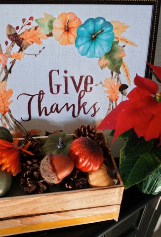 In a Difficult Year, Local Youth Give Thanks